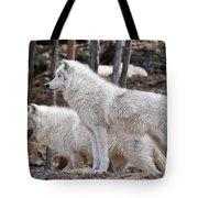 Arctic Wolf Pair Tote Bag