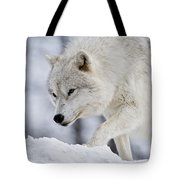 Arctic Wolf Pictures 1054 Tote Bag