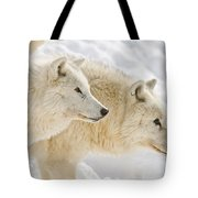 Arctic Wolf Pictures 1081 Tote Bag