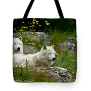 Arctic Wolf Pictures 1128 Tote Bag