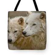 Arctic Wolf Pictures 1174 Tote Bag