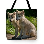 Arctic Wolf Pictures 346 Tote Bag
