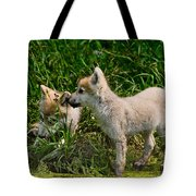 Arctic Wolf Pictures 347 Tote Bag