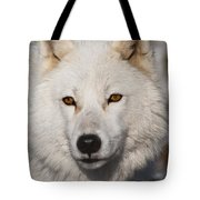 Arctic Wolf Pictures 814 Tote Bag