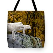 Arctic Wolf Pictures 930 Tote Bag