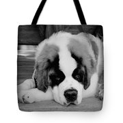 Are We Done Yet Tote Bag
