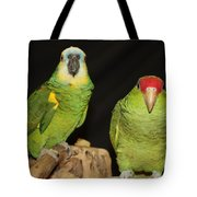 Are You Looking At Us Tote Bag