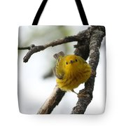 Are You Watching Me Tote Bag