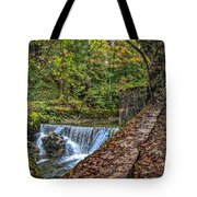 Areuse Gorge Tote Bag