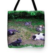 Argentina Cat Park Tote Bag