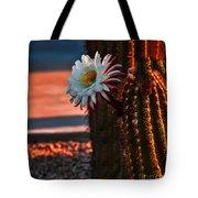 Argentine Cactus Tote Bag