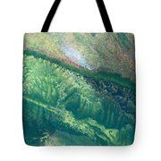 Ariel View Of Venus Tote Bag