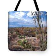 Arizona Afternoon Tote Bag