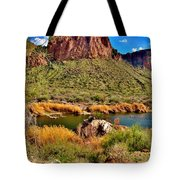Arizona At Its' Best Tote Bag