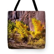 Arizona Autumn Colors Tote Bag