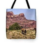 Arizona Beauties Tote Bag