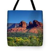 Arizona Beauty Tote Bag
