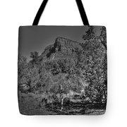 Arizona Bell Rock Valley N11 Tote Bag