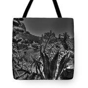Arizona Bell Rock Valley N9 Tote Bag