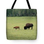 Arizona Bison Tote Bag