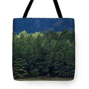 Arizona Forest Tote Bag