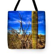 Arizona Landscape IIi Tote Bag