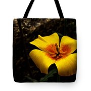 Arizona Poppy Tote Bag