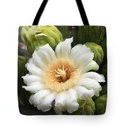Arizona State Flower The Saguaro Blossom Tote Bag