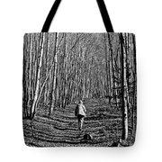 Arizona Winter Trail Tote Bag