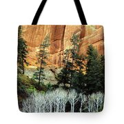 Arizona's Betatkin Aspens Tote Bag