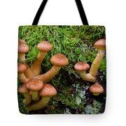 Armillariella Polymyces Tote Bag