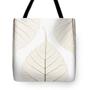 Arranged Leaves Tote Bag