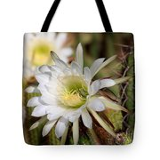 Array Of Night Bloomers Tote Bag