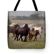 Arrington Ranch Herd - 2 Tote Bag