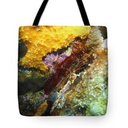 Arrow Crab In A Rainbow Of Coral Tote Bag