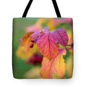 Arrowwood Leaf - Featured 3 Tote Bag