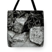Art In Kochi Tote Bag