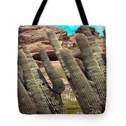 Art No.1898 American Landscape Cactus Stone Mountains And Skyview By Navinjoshi Artist Toronto Canad Tote Bag