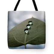 Art Of Balance Tote Bag