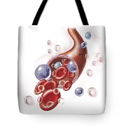 Arteriole With Red Blood Cells, White Tote Bag