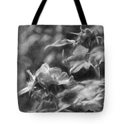 artistic painterly Black and white monochromatic two dogroses summer 2014 Tote Bag