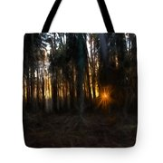 Artistic Painterly Sun Between Trees  Tote Bag