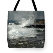 Artist's Point Tote Bag