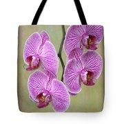 Artsy Phalaenopsis Orchids Tote Bag