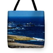Aruba Coast Tote Bag