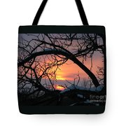 As A Bird Sees Tote Bag