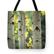 As Autumn Arrives  Tote Bag