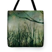 As Night Apaproaches  Tote Bag