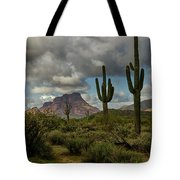 As The Clouds Pass By  Tote Bag