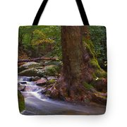 As The River Runs Tote Bag
